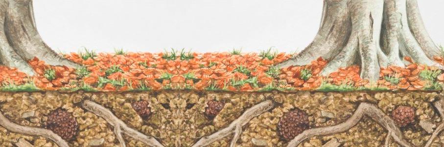 Ecologia del tartufo